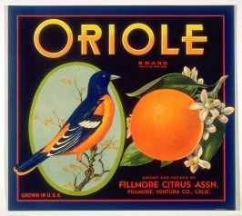 Oriole Brand, Fillmore Citrus Assn., Fillmore, Ventura Co., California