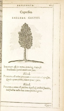 Quercus (The Oak), emblem 199 in the book Emblemata by Andrea Alciato (Antwerp: Plantin [under the direction] of Raphelengius, 1608)