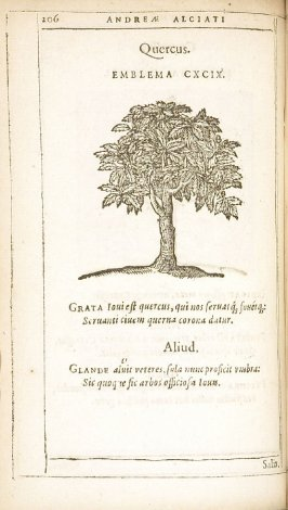 Salix (The willow), emblem 200 in the book Emblemata by Andrea Alciato (Antwerp: Plantin [under the direction] of Raphelengius, 1608)