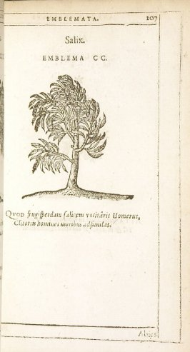 Abies (The fir tree), emblem 201 in the book Emblemata by Andrea Alciato (Antwerp: Plantin [under the direction] of Raphelengius, 1608)