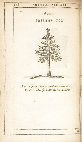 Picea (The spruce tree), emblem 202 in the book Emblemata by Andrea Alciato (Antwerp: Plantin [under the direction] of Raphelengius, 1608)