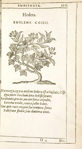 Ilex (The holm-oak), emblem 205 in the book Emblemata by Andrea Alciato (Antwerp: Plantin [under the direction] of Raphelengius, 1608)