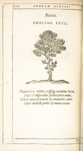 Amygdalus (The almond), emblem 208 in the book Emblemata by Andrea Alciato (Antwerp: Plantin [under the direction] of Raphelengius, 1608)