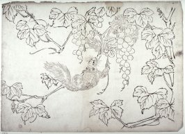 Squirrels and Grapes