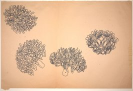 Untitled (Electroplated Wire Sculpture, Four Views)