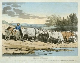 Ukrain Drover, from A Picturesque Representation of the Manners, Customs, and Amusements, of the Russians