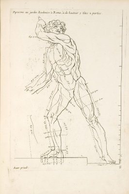 Plate 8 in the book Les Proportions du corps humain mesurées sur les plus belles figures de l'Antiquité (Paris: Girard Audran, 1683). [Bound with]: Sentimens des plus habiles peintres du temps sur la pratique de la peinture… (Paris: the author, 1680)
