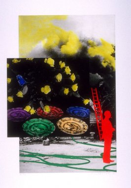 To Insert: Person and Ladder (Red) / Hose / Smoke; Flowers and Plates (Blue Hope)