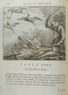 Illustration for the eightieth fable on page 158 in the book Les fables d'Esope et de plusieurs autres excellens mythologistes (Amsterdam: Etienne Roger 1714)