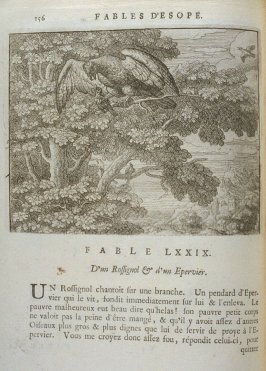 Illustration for the seventy-ninth fable on page 156 in the book Les fables d'Esope et de plusieurs autres excellens mythologistes (Amsterdam: Etienne Roger 1714)