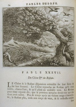 Illustration for the thirty-seventh fable on page 74 in the book Les fables d'Esope et de plusieurs autres excellens mythologistes (Amsterdam: Etienne Roger 1714)