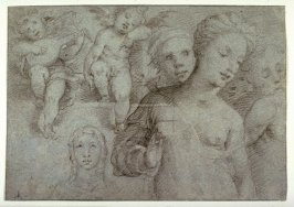 Sheet of Figure Studies with Two Musician Angels, Half-length Figure of a Woman, Four Heads, and a Shoulder, studies for paintings in Siena