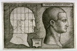 The Head Of A Man