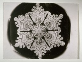 Snowflake, March 12, 1888, Jericho, Vermont