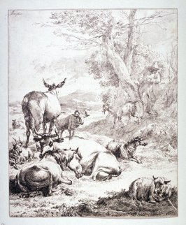 (The Flock Resting)