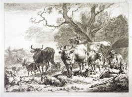 (Herder with cows in landscape)