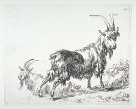 (#4 from) La cahier a l'homme (set of 6 goats)