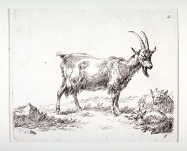 (#6 from) La cahier a l'homme (set of 6 goats)