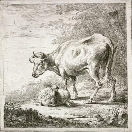 [#3 from] Set of Six Etchings of Cattle (Cows)