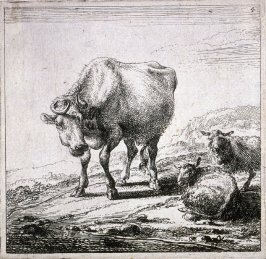[#4 from] Set of Six Etchings of Cattle (Cows)
