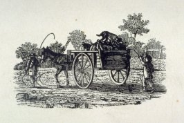 Cart and donkey with dog on top