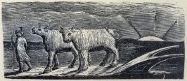 No.15: Thenot, illustration to Ambrose Philips' 'Imitation of Eclogue I', from Dr R. J. Thornton's 'The Pastorals of Virgil' (London, 1821)