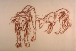 Untitled ( 2 dogs)