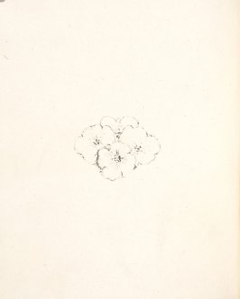 Untitled, pg. IV, in the book Daphnis et Chloé by Longus (translated by Jacques Amyot) (Paris: Ambroise Vollard, 1902).