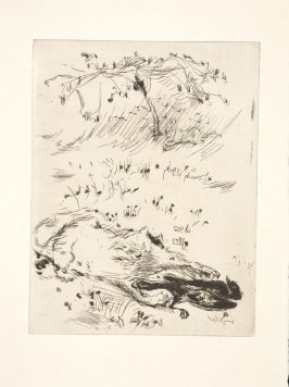 Untitled, to be inserted between pages 142 and 143, suite on Arches laid paper, in the book Dingo by Octave Mirbeau (Paris: Ambroise Vollard, 1924)