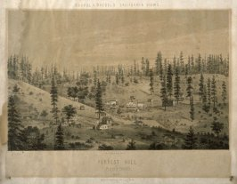 Forrest Hill, Placer County from Kuchel & Dresel's Califronia Views