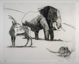 Elephant, Ibex, and Mouse, plate 5 in the portfolio Twenty Etchings