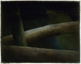Forest Abstraction II