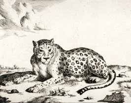 Plate 6 from a series of Leopards
