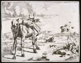One of a set of 8 etchings of cows: Plate 5