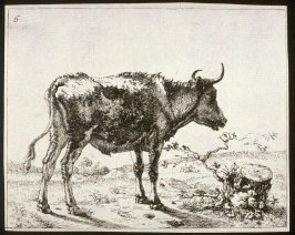 One of a set of 8 etchings of cows: Plate 6