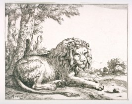 One of a set of 8 Lions (Plate 3)
