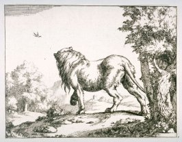 Plate 4 from a series of Lions
