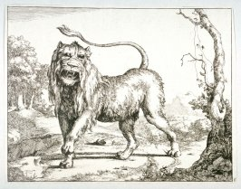 Plate 6 from a series of Lions