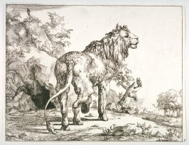 Plate 8 from a series of Lions
