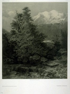 #94, from Fifty lithographs from Oeuvres de A. Calame