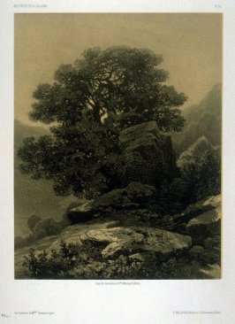 #90, from Fifty lithographs from Oeuvres de A. Calame