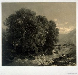 At Brientz (1853) from Fifty lithographs from Oeuvres de A. Calame