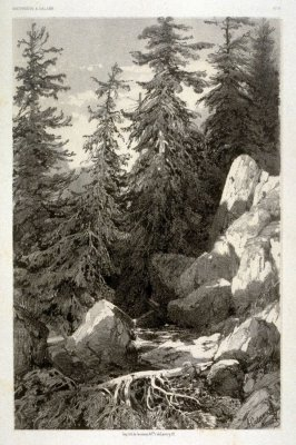 Camton de Berne, Suisse (1853) from Fifty lithographs from Oeuvres de A. Calame