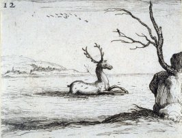 Stag in Water, plate 12 from Lux Claustri