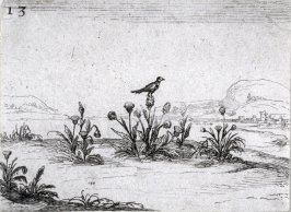 Bird on a Thistle. plste 13 from Lux Claustri