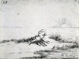 A crayfish looking at the sun, plate 18 from Lux Claustri (