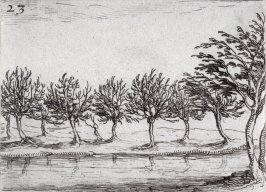 Willows on the edge of the water, plate 23 from Lux Claustri