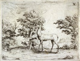 The Doe, plate 11 from Life of the Virgin in Symbols