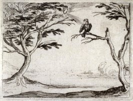 The vulture, plate 8 from Life of the Virgin in Symbols