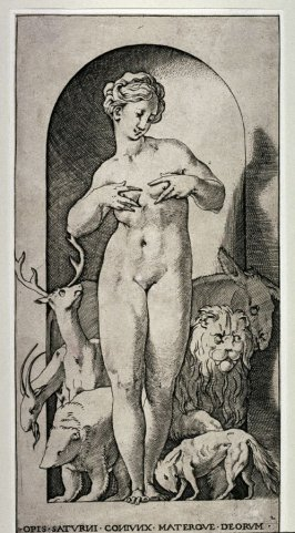 Opis, after Rosso Fiorentino, from the series Mythological Gods and Goddesses